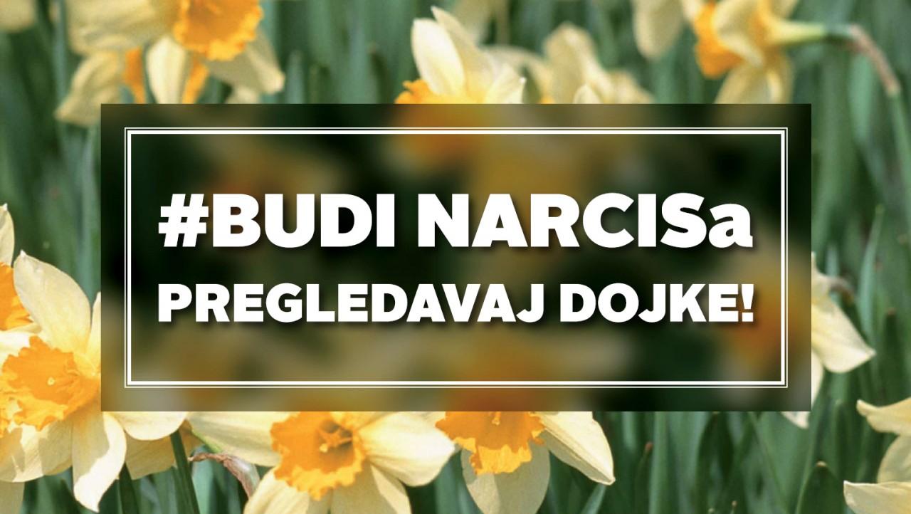 Budi-narcis